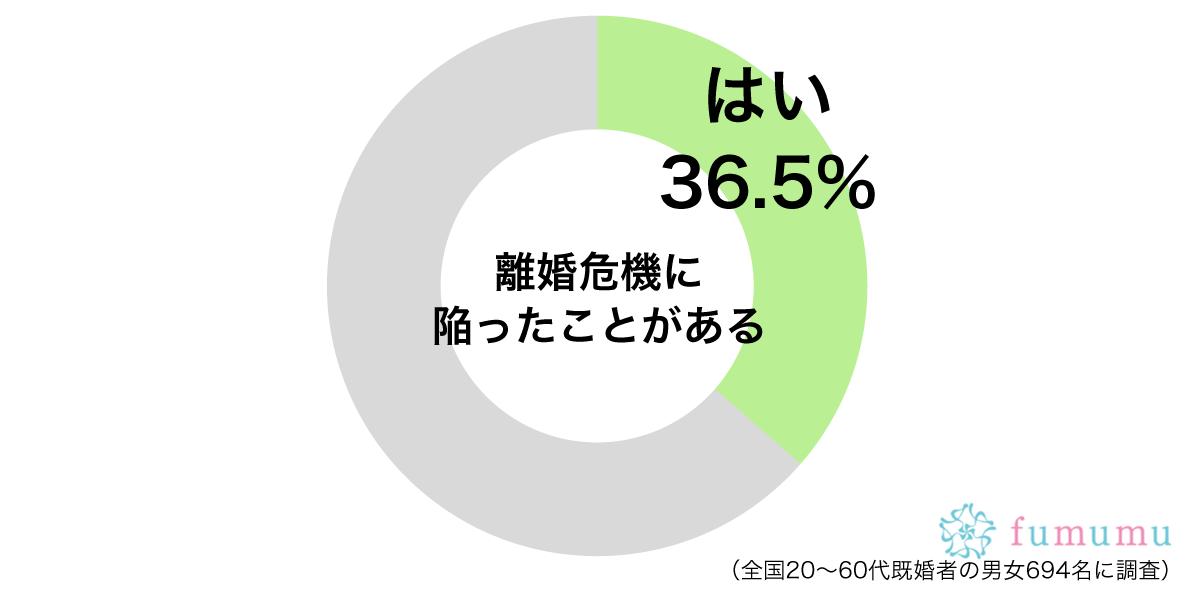 離婚危機円グラフ