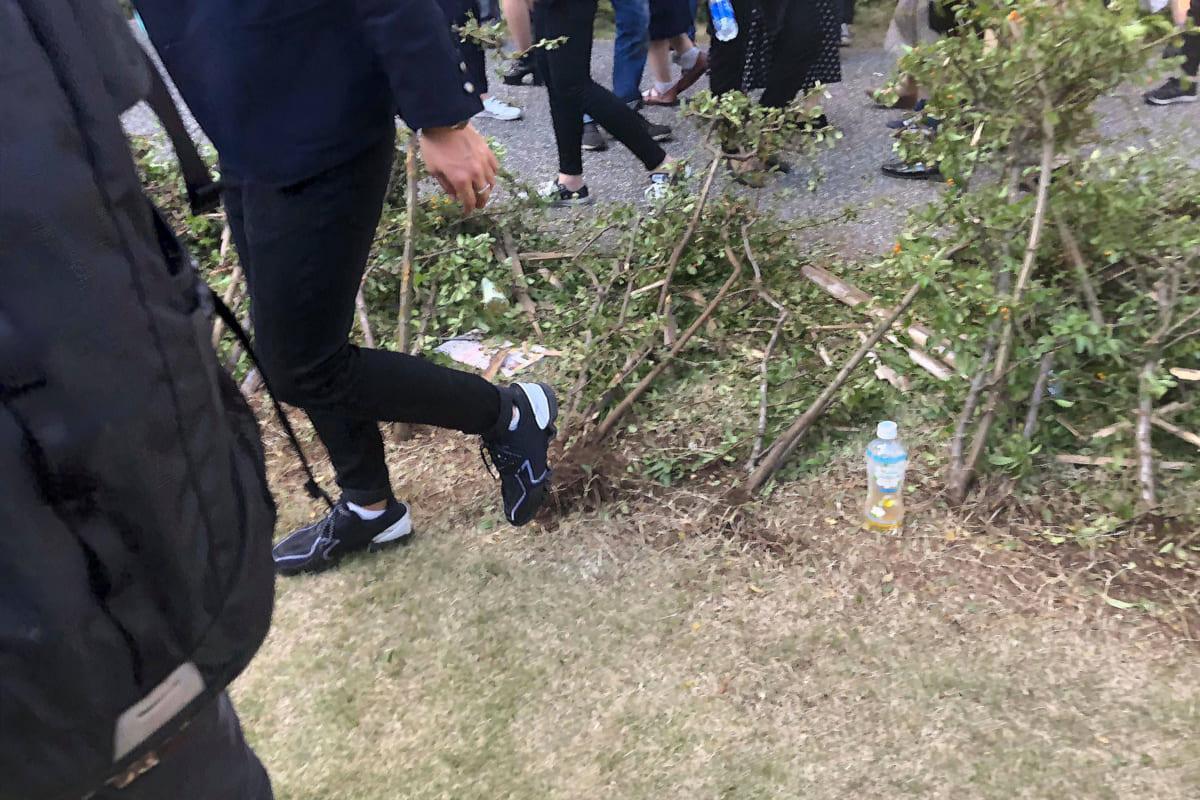 立教大学2018年11月3日 壊された生け垣