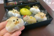 カワイイの大渋滞! 新宿駅ナカに登場したリスまんじゅうを買ってみた