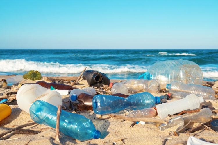 汚れたビーチ
