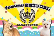 fumumu動物キングダム~みんなのモフモフ自慢~